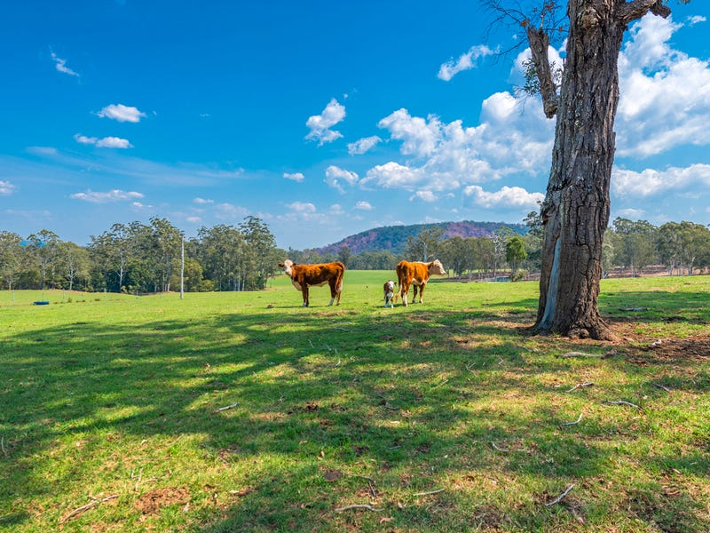 696 Kungala Road, Kungala, NSW 2460