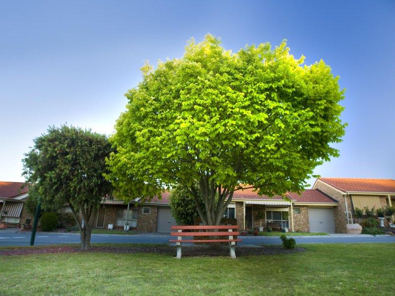 Villa 504, 1075 Grand Junction Road, Hope Valley, SA 5090