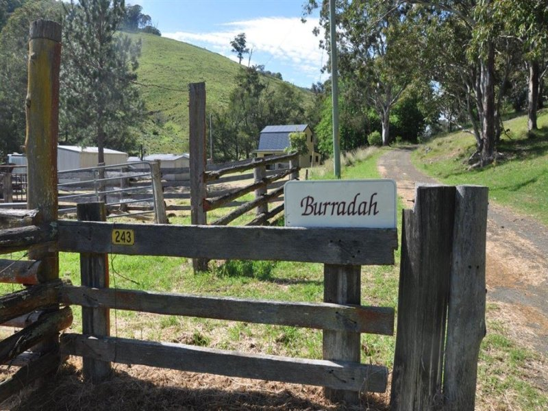 "243 Carters Rd, ""Burradah"", Stewarts Brook, NSW 2337"