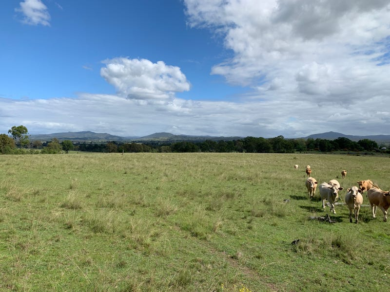 6097 Mount Lindesay Hwy, Woodhill, Qld 4285