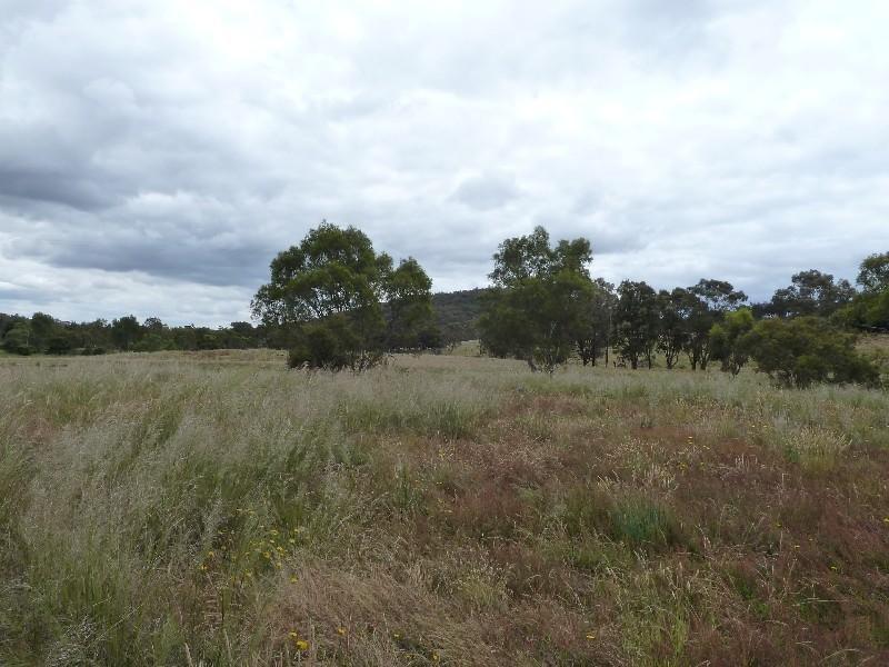 Cnr Northern Highway & Majors Line Road, Tooborac, Vic 3522