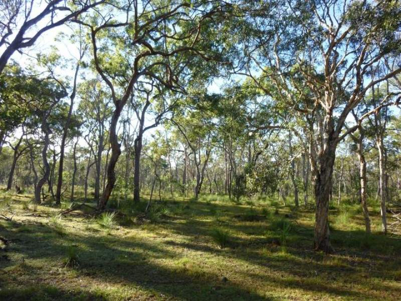 Off Bruce Highway (via Childers), Cherwell, Qld 4660