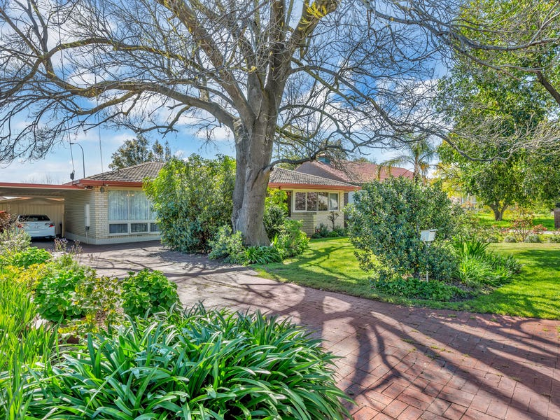 5 Mary Crescent, Newton, SA 5074