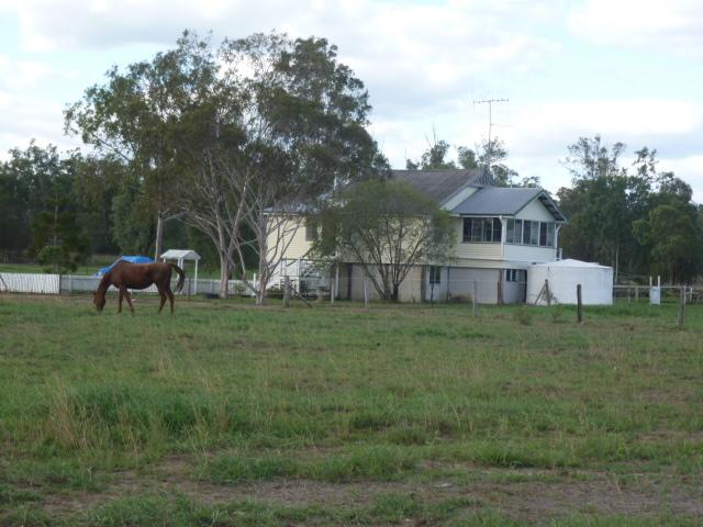 32 Kerwee Road, Ceratodus