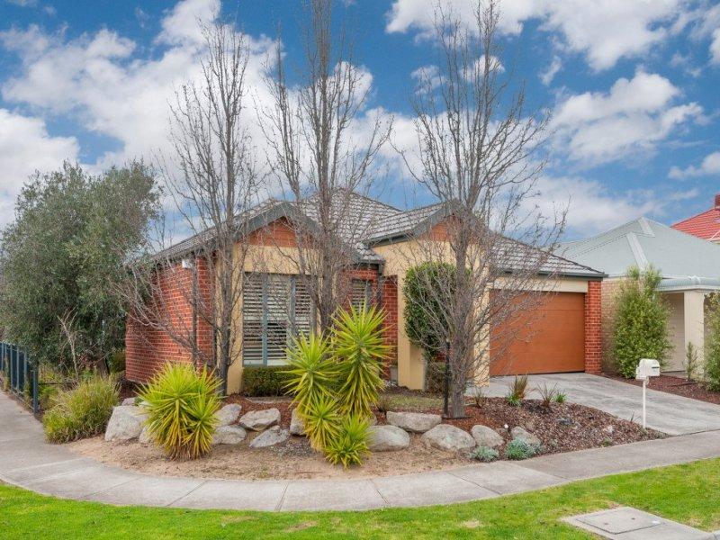 8 Parramatta Walk, Craigieburn, Vic 3064