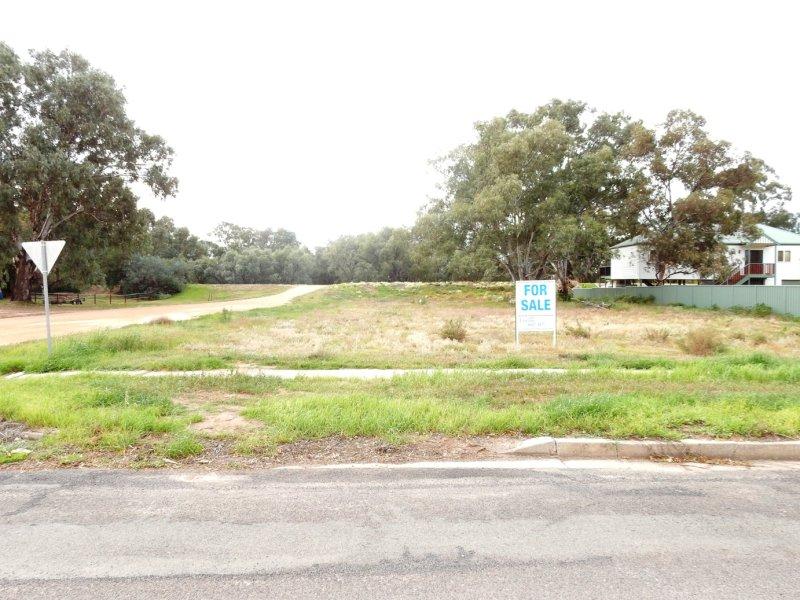 143 Darling Street, Wentworth, NSW 2648