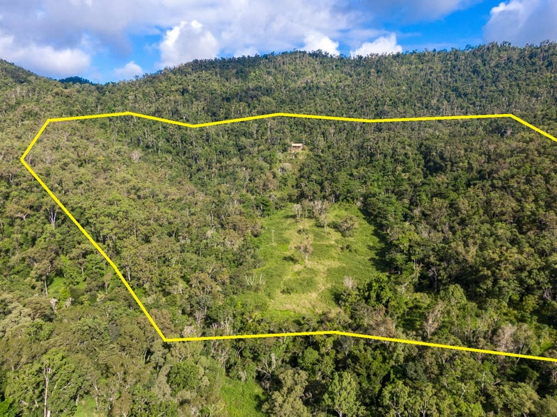289 Forestry Road, Brandy Creek, Qld 4800