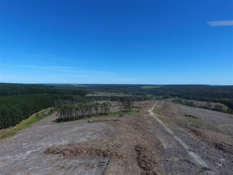 1675 Tomahawk Creek Road, Irrewillipe, Vic 3249