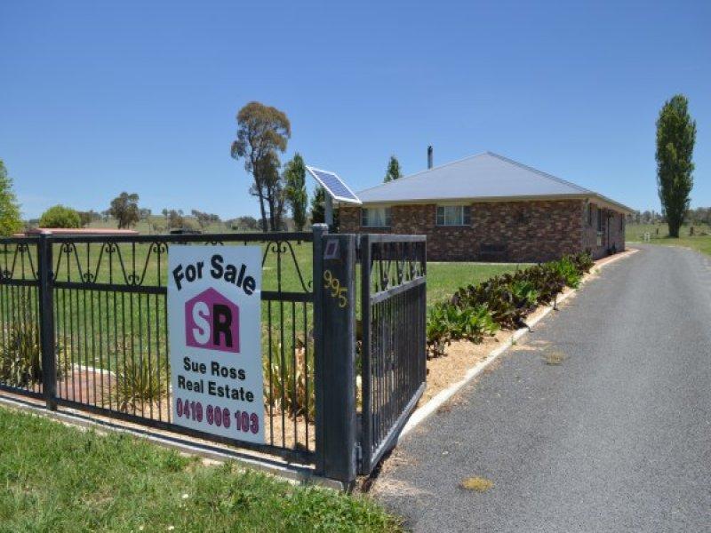 995 Llangothlin Road, Llangothlin, NSW 2365