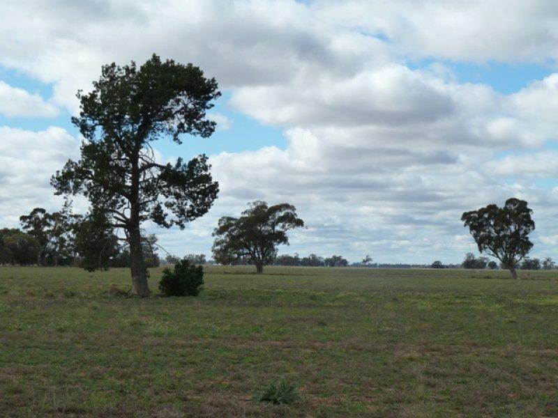 "0 ""Sheridan"" Evandale Road, Bunnaloo, NSW 2731"