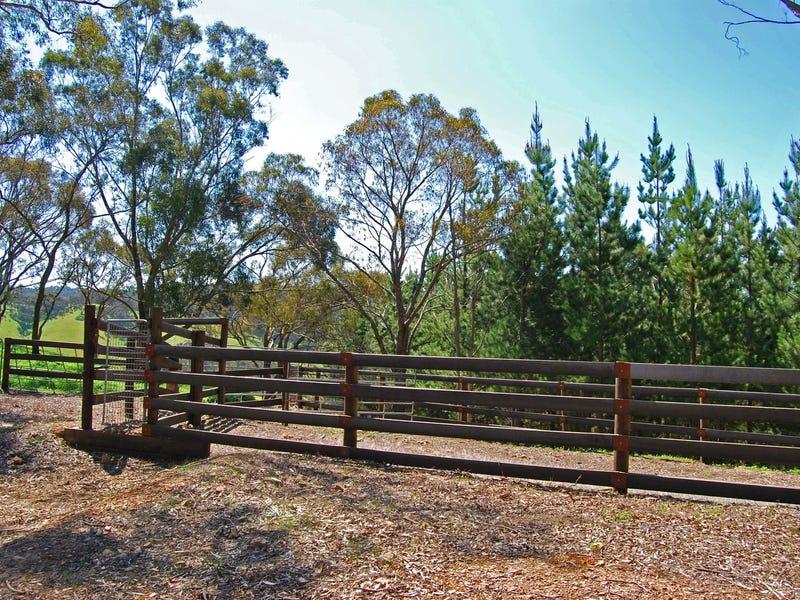 125 Horans Track, Strath Creek, Vic 3658