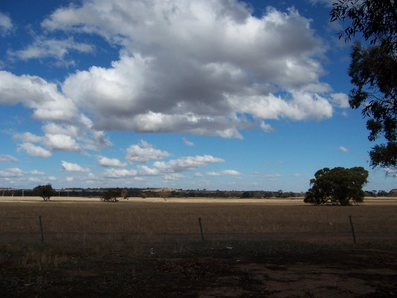 614, Dumbleyung Road, Wagin, WA 6315