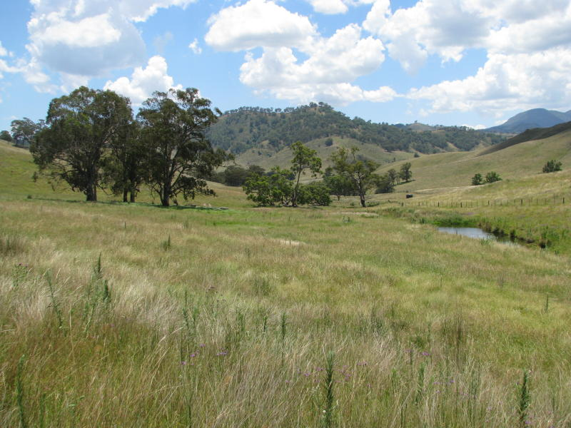 Address available on request, Upper Rouchel, NSW 2336