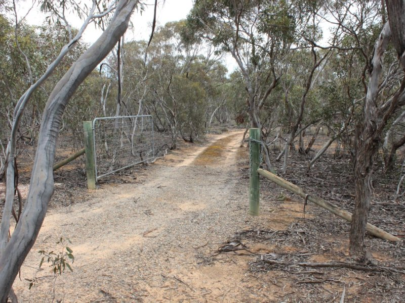 Section 457 Murraylands Road, Walker Flat, SA 5238