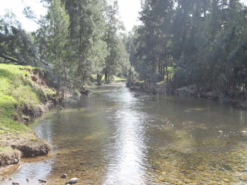 1770 Nulla Nulla Creek Rd, Bellbrook, NSW 2440