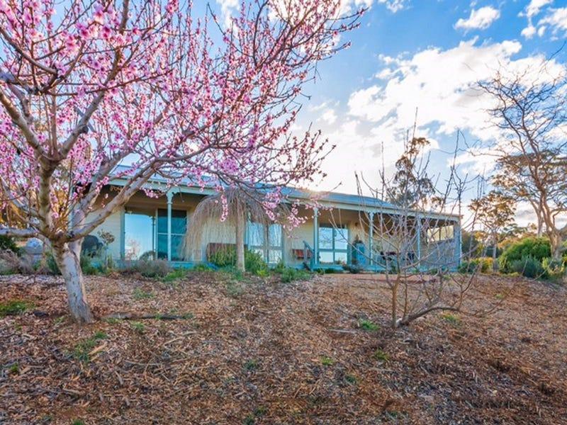 800 Shingle Hill Way, Gundaroo, NSW 2620
