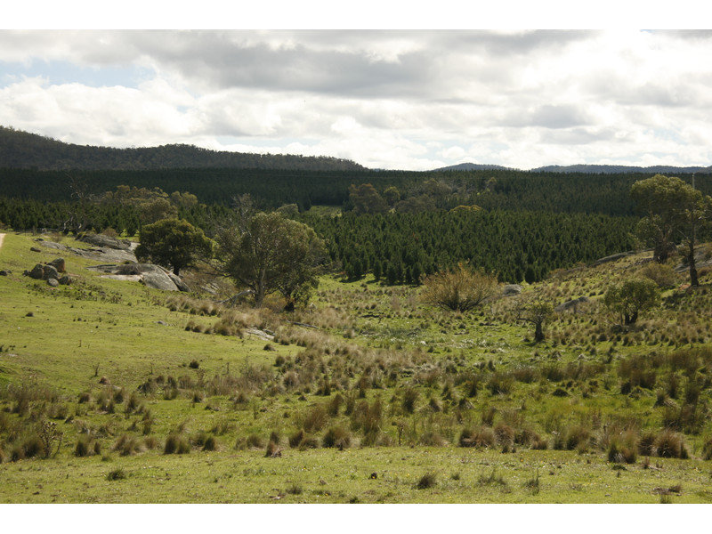 Peak View Road, Cooma, NSW 2630
