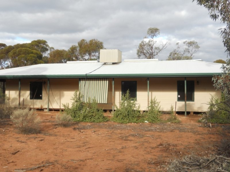 907 Thiele Road, Loveday, SA 5345