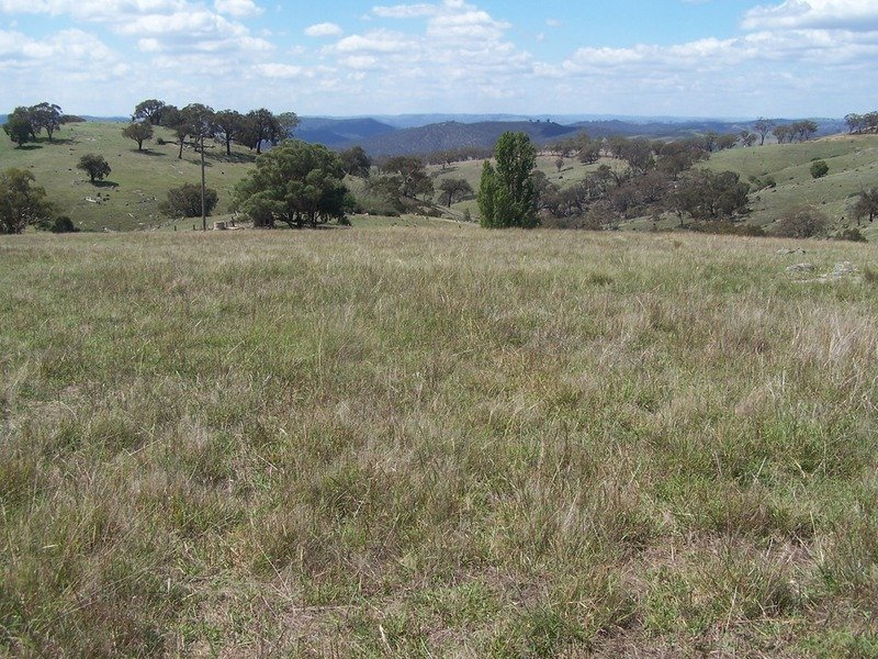 Lot 3 Peach Gardens Road, Bigga, NSW 2583