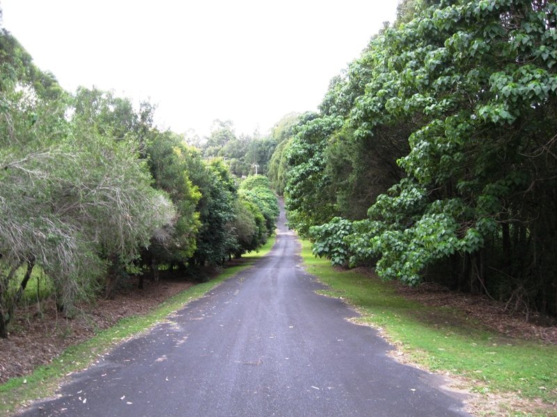 824 Terranora Road, Bungalora, NSW 2486