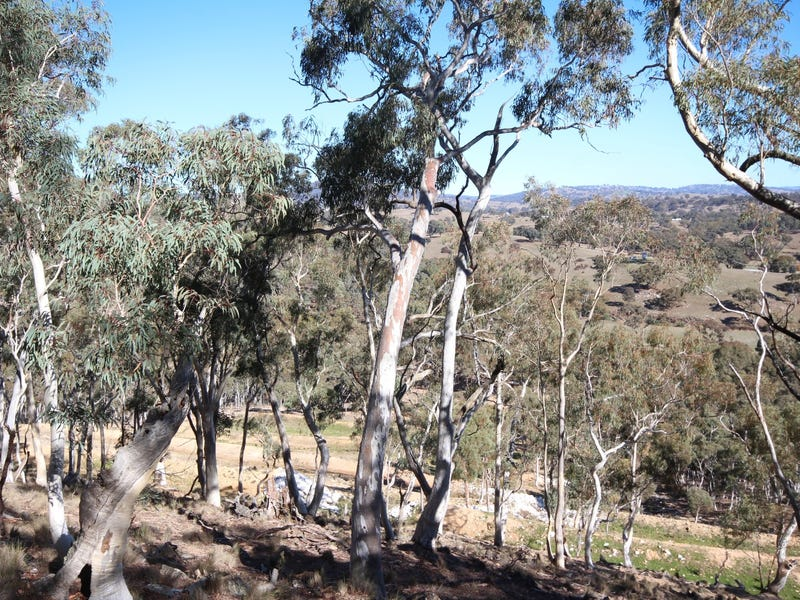 2902 Beaconsfield Road, Wisemans Creek, NSW 2795