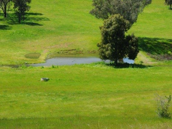 621 NAROOGAL ROAD, Bakers Swamp, NSW 2820