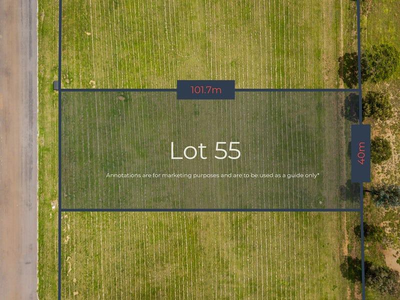 Lot 55, Queen Street, Muswellbrook, NSW 2333