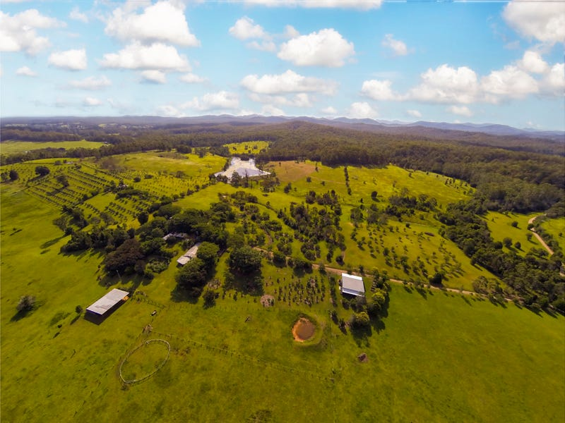 387 Tamban Road, Eungai Creek, NSW 2441