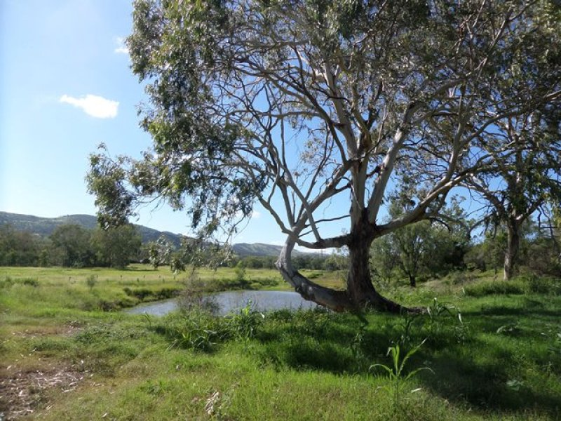 Lot 60 Ropeley Rockside Road, Ropeley, Qld 4343