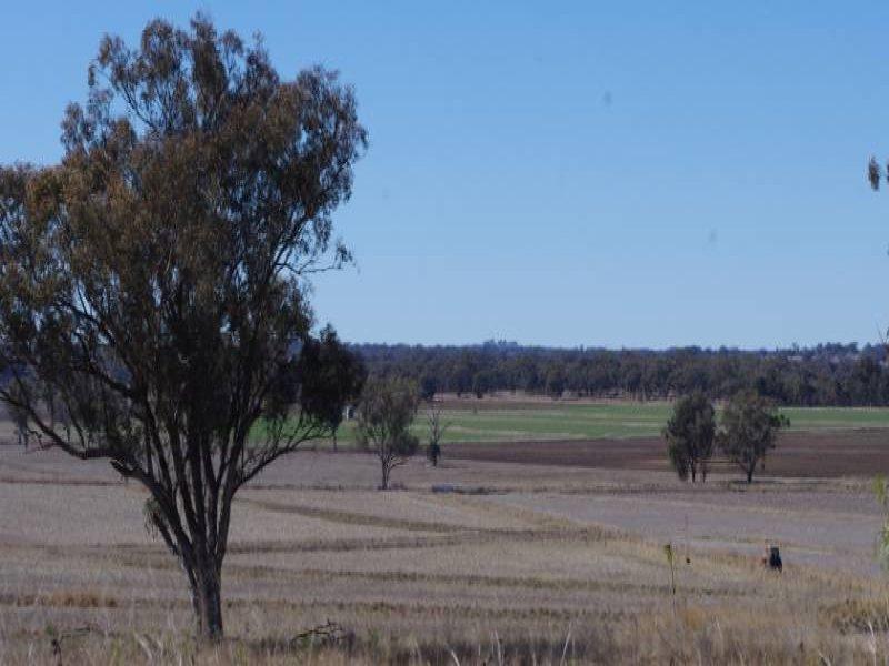 Havilah Bingara Road, Delungra, NSW 2403