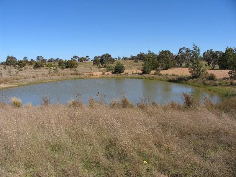 MT BAW BAW ROAD, Goulburn, NSW 2580