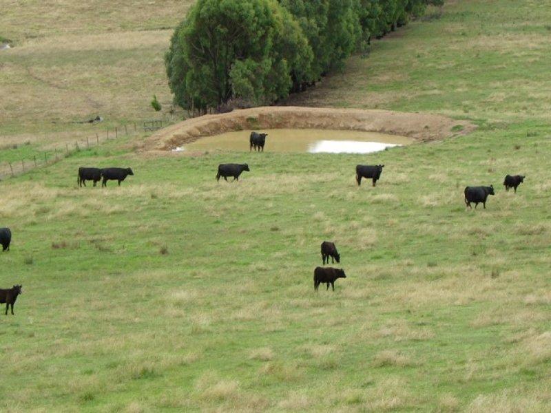 1 Tallangatta Creek Road, Tallangatta Valley, Vic 3701