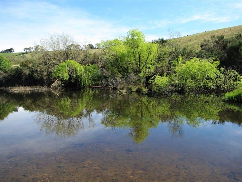 7 Sandy Creek Road, Bombala, NSW 2632