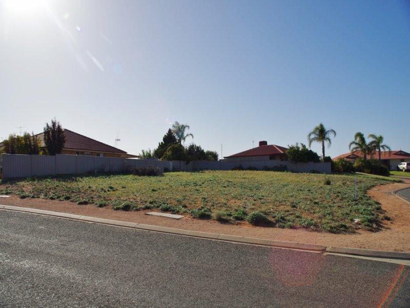 24 Ian Drive, Paringa, SA 5340