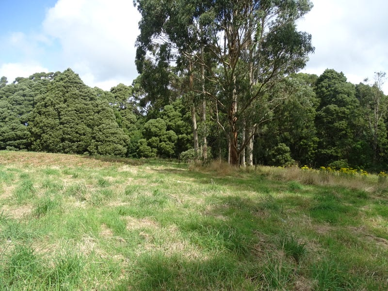 Lot 1, 4175 Great Ocean Road,, Lavers Hill, Vic 3238