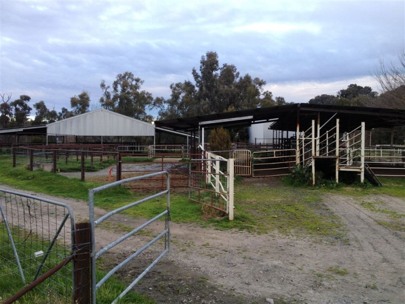 135 Yarra Yarra Road,, Holbrook, NSW 2644