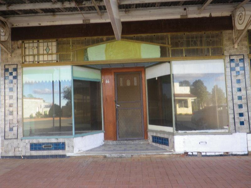 66 Queens Street, Barmedman, NSW 2668