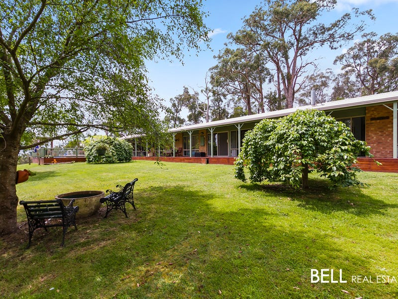 231 Tschampions Road, Macclesfield, Vic 3782