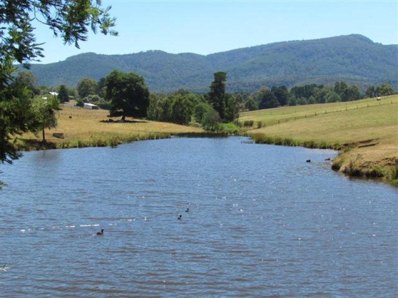 1600 Mt Baw Baw Road (Near Noojee), Icy Creek, Vic 3833