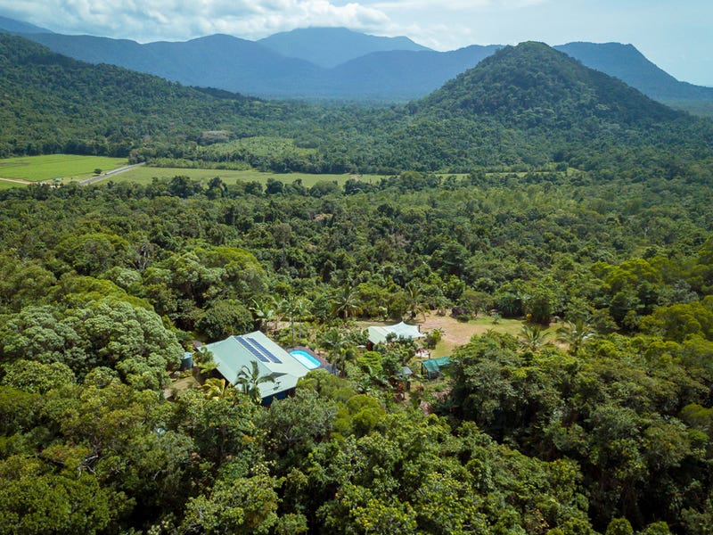19 Palm Road, Daintree, Qld 4873