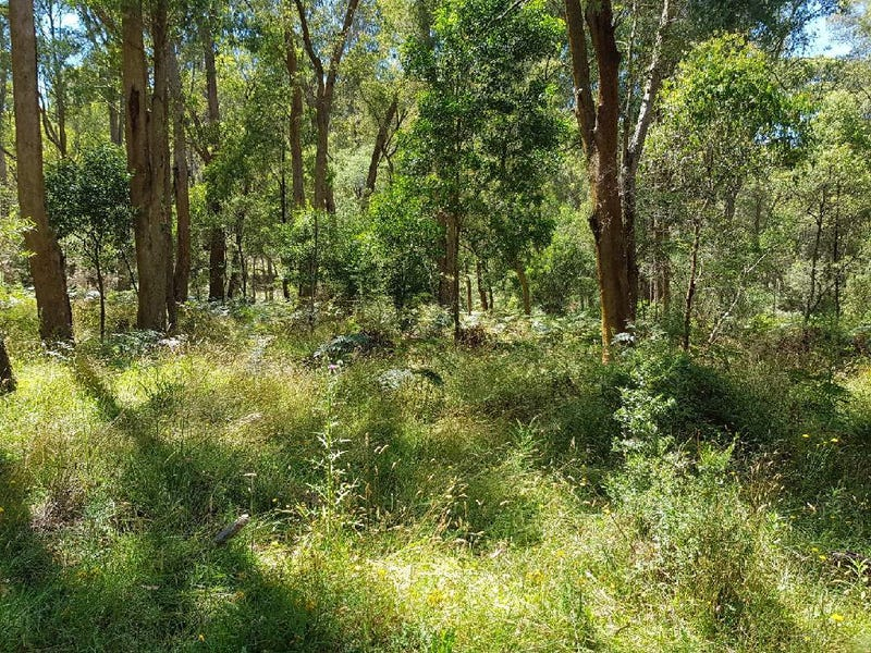 ". Bullhead Road ""Hill-N-Glen"", Mitta Mitta, Vic 3701"