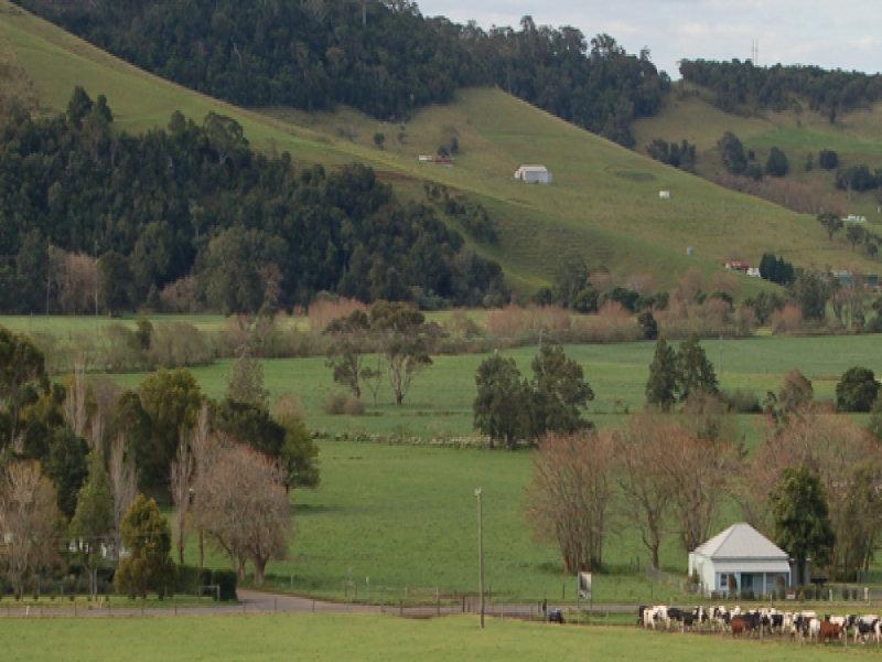 18 Factory Lane, Jamberoo, NSW 2533