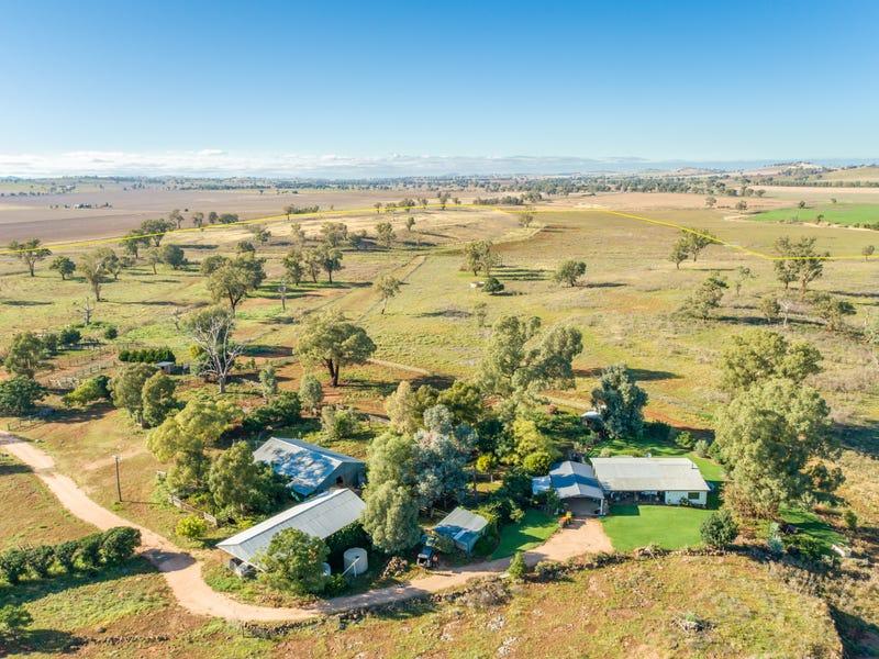 5845 Canowindra Road (Toogong), Canowindra, NSW 2804