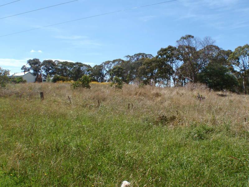 239 Sandon Street, Guyra, NSW 2365