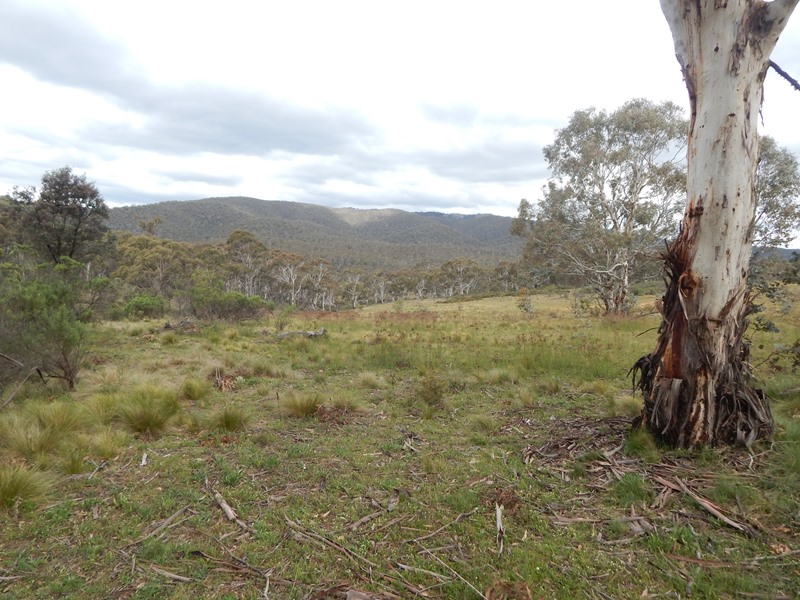 Lot 110 Dangelong Rd, Cooma, NSW 2630