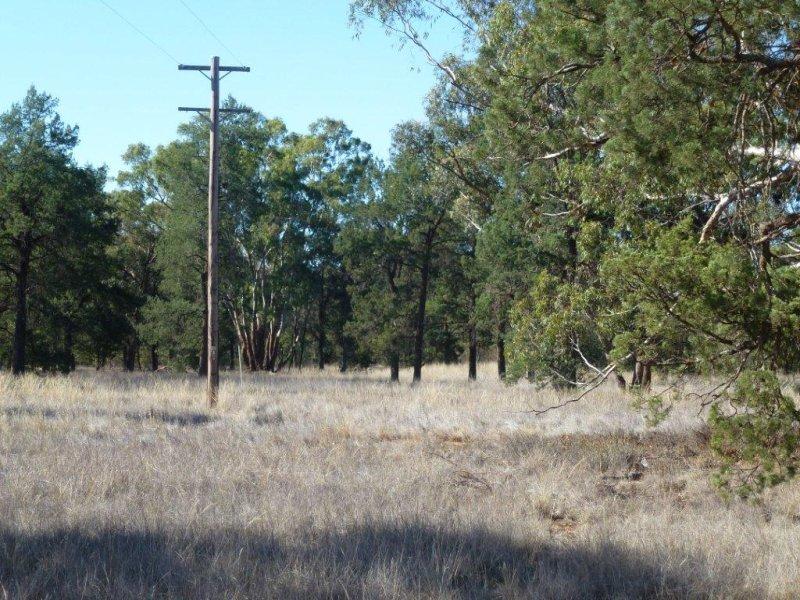KAKADU FOREST BLOCK, Jerilderie, NSW 2716