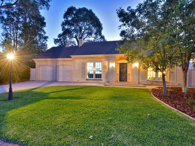 25 Sheoak Avenue, Novar Gardens, SA 5040