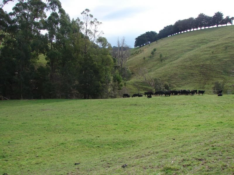 Lot 2 CLEAR CREEK VALLEY ROAD, Mirboo, Vic 3871