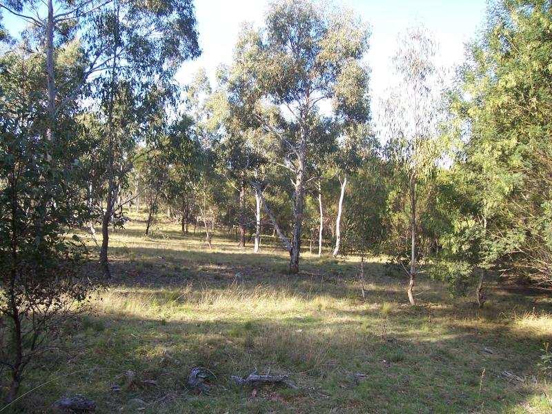Lot 2/77 Fernbrook Rd, Nerriga, NSW 2622