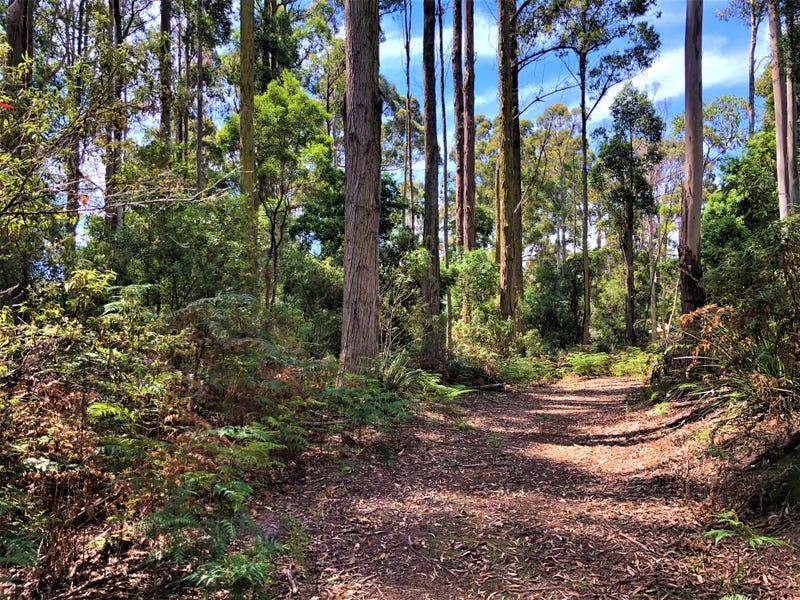 Lot 2 Back Cam Road, Somerset, Tas 7322